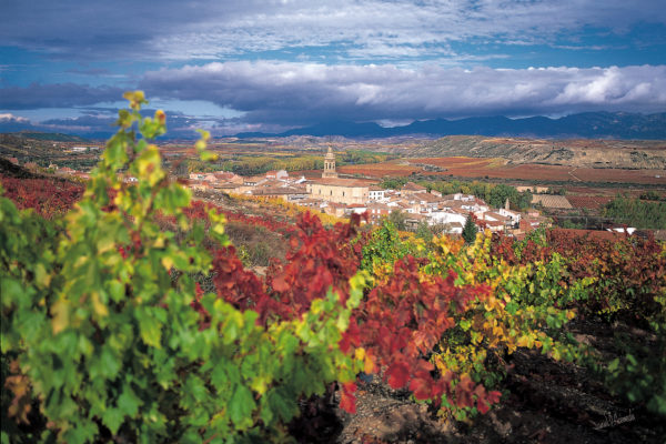 Destination La Rioja: le rouge (et le vert) lui va si bien!