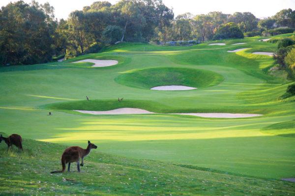 Golf en Australie: c'est reparti!